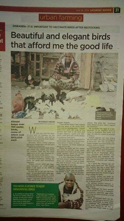 Raphael in the Daily Nation